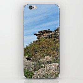Rocky Canyon iPhone Skin