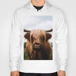 Scottish Highland Cattle in Scotland Portrait II Hoody