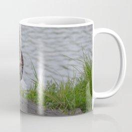 Immature Closeup Coffee Mug