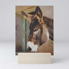 Old Donkey Mini Art Print