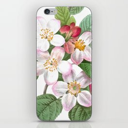 HIGHEST QUALITY botanical poster of Apple tree iPhone Skin