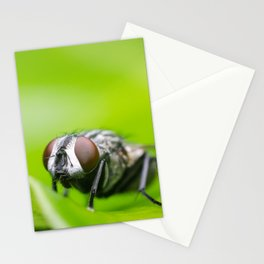 Fly On A Leaf Stationery Cards
