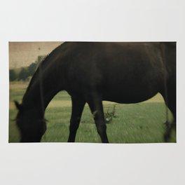 Dark Horse II Rug