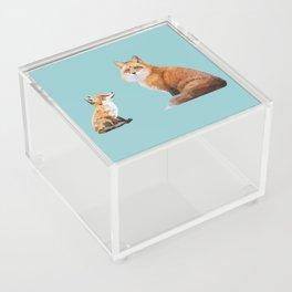 Fox Tenderness Acrylic Box