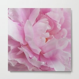 Floral Fun - Peony in pink 4 soft and billowy Metal Print