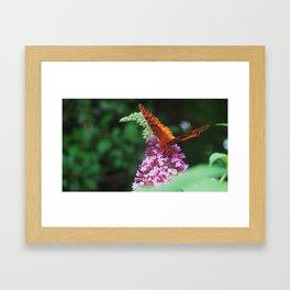Springtime in Virginia I  Framed Art Print