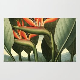 Birds of Paradise : Temple of Flora Rug