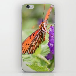 Butterfly in Ometepe, Nicaragua iPhone Skin