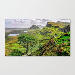Lonely Tree In Beautiful Subtropical Mountainside Ultra HD Canvas Print
