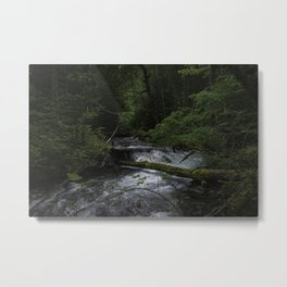Solitude in Oregon Metal Print