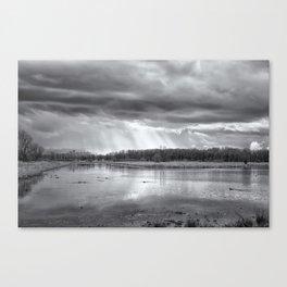 Birdland BW Canvas Print