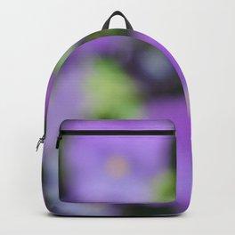 Blur II Backpack