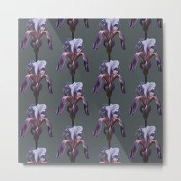 iris: shades of grey Metal Print