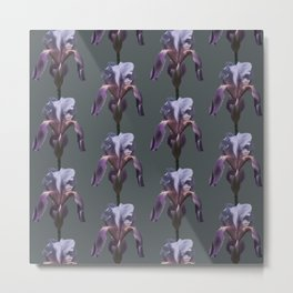 iris: shades of grey Metal Print