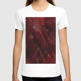 Darken Jerky T-shirt