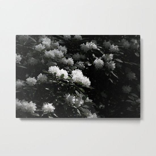 SEA OF BLOSSOMS Metal Print