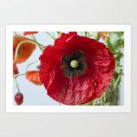 poppy Art Prints featuring Poppy by Maria Heyens