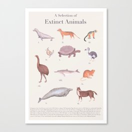 A Selection of Extinct Animals Canvas Print