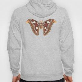 Atlas moth Hoody
