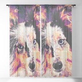 border collie dog 5 portrait wslsh Sheer Curtain