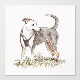 Playful Pup Canvas Print