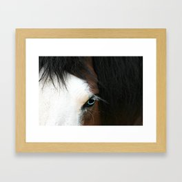 Coasack Horse Framed Art Print