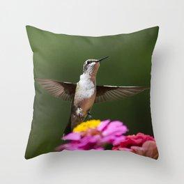 Hummingbird VI Throw Pillow