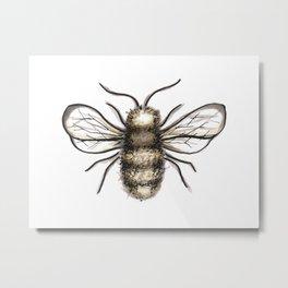 Bumble Bee - Katrina Niswander Metal Print