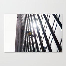 Sky Ninja Canvas Print