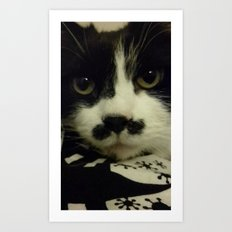 King Charlie the Cat Art Print