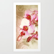 Orchid Dream 2 Art Print