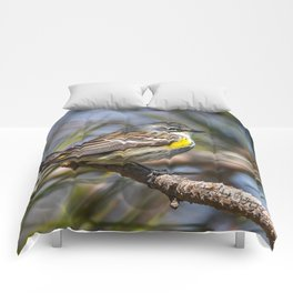 Yellow Rumped Warbler in May Comforters