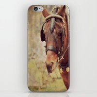 pony iPhone & iPod Skins featuring Pony by KimberosePhotography