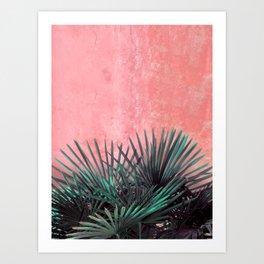 Palm on Pink wall II Art Print