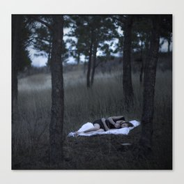 Sleepless.  Canvas Print