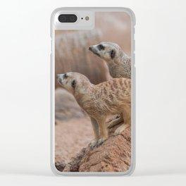 Meerkats Clear iPhone Case