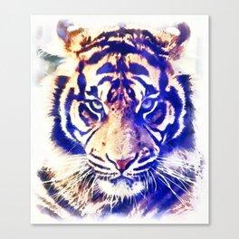 The blue tiger Canvas Print