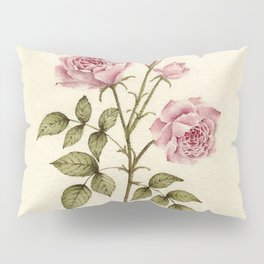 Rosa Jubilee Pillow Sham