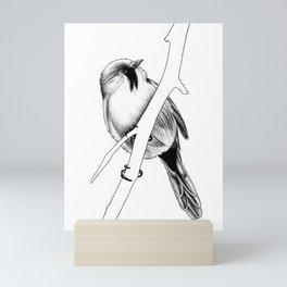 Bearded reedling - ink illustration Mini Art Print
