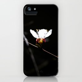 Sakura flowers on black 03 iPhone Case