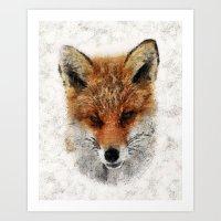 Fox II Art Print