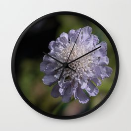 Purple Pincushion Flower Wall Clock