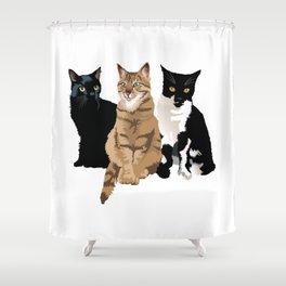 Fellini, Lola and Minou  Shower Curtain