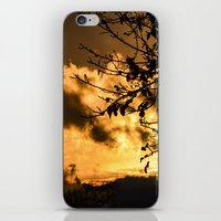 black and gold iPhone & iPod Skins featuring Black & Gold by Imaginatio