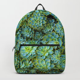 Amazing Green Color Succulents Leaf Echeveria Plant Nature Botanical Art Backpack