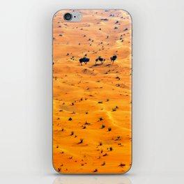 orange sand iPhone Skin