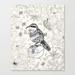 Taiwan Scimitar Babbler Canvas Print