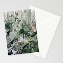 Cacti Heaven Stationery Cards