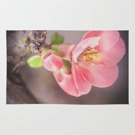 Tree blossom Rug