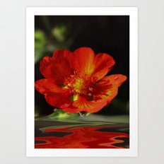 Little red Bloom Art Print